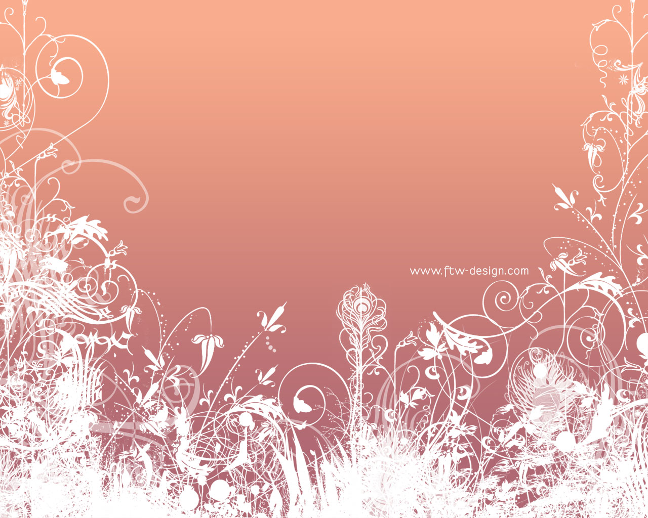 Pink Butterfly Backgrounds